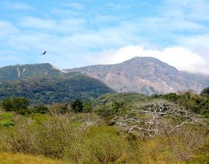 Guanacaste 1