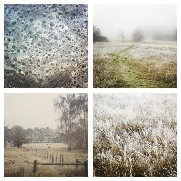 Frosty English Winter