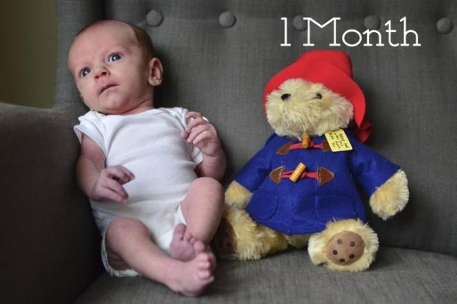 Bertie 1 Month