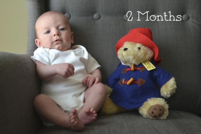 Bertie 2 months