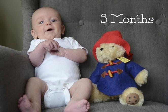 Bertie 3 Months