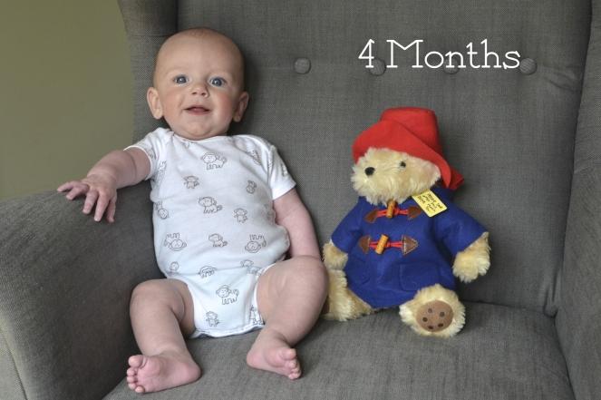 Bertie 4 Month