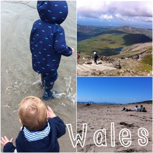 Wales Collage