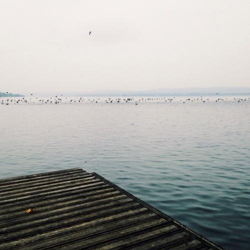 Lago Varese at Gavirate